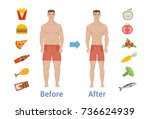 the influence of diet on the... | Shutterstock .eps vector #736624939