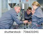 team of apprentices operanting... | Shutterstock . vector #736631041
