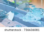 broken glass after bomb   Shutterstock . vector #736636081