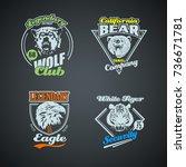 set of vintage wild animal... | Shutterstock .eps vector #736671781