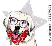 Vector Portrait Of Labrador...