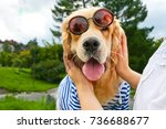 Stock photo dog in glasses golden retriever with sunglasses funny dog dog smiling 736688677