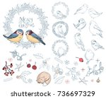 collection of different winter... | Shutterstock .eps vector #736697329