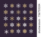 cute snowflakes collection...   Shutterstock .eps vector #736733104