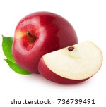 isolated apples. whole red ... | Shutterstock . vector #736739491
