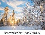 snowy landscape at sunset ... | Shutterstock . vector #736770307