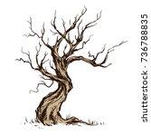 handsketched illustration of... | Shutterstock .eps vector #736788835