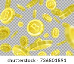 bitcoins on a transparent... | Shutterstock .eps vector #736801891