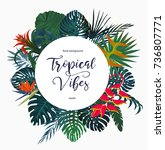 exotic tropical banner  logo... | Shutterstock .eps vector #736807771