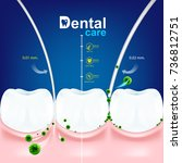 dental care tooth icon vector... | Shutterstock .eps vector #736812751