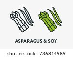green asparagus and soy beans... | Shutterstock .eps vector #736814989