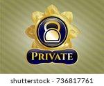 golden emblem or badge with... | Shutterstock .eps vector #736817761