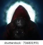 wizard in hood | Shutterstock . vector #736831951