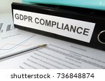 general data protection... | Shutterstock . vector #736848874