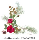 bouquet of red roses with pine... | Shutterstock .eps vector #736860901