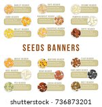 banners or cards with seeds.... | Shutterstock .eps vector #736873201