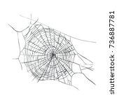 web spiderweb weaving vector... | Shutterstock .eps vector #736887781