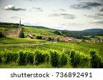 alsace. landscape vineyards of... | Shutterstock . vector #736892491