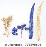 golden and blue gold leaf.... | Shutterstock . vector #736895605