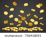 falling coins  falling money ... | Shutterstock .eps vector #736918051