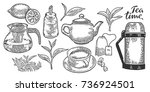tea cup  teapot  sugar bowl ... | Shutterstock .eps vector #736924501
