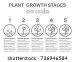 plant growth stages... | Shutterstock .eps vector #736946584