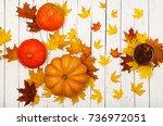 thanksgiving background ... | Shutterstock . vector #736972051