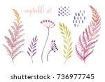 watercolor autumn set. twigs... | Shutterstock . vector #736977745