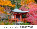daigo ji temple with colorful... | Shutterstock . vector #737017801