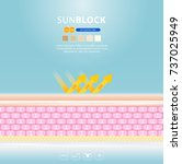 uv reflection skin after... | Shutterstock .eps vector #737025949