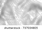 topographic map contour... | Shutterstock .eps vector #737034805
