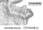 topographic map contour... | Shutterstock .eps vector #737034811