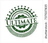 green ultimate distress rubber... | Shutterstock .eps vector #737037835