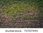 Brick Wall With Moss Growing...