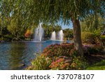 the mezhyhirya national park in ...   Shutterstock . vector #737078107