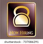 golden emblem or badge with... | Shutterstock .eps vector #737086291