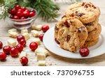 homemade christmas cranberry... | Shutterstock . vector #737096755