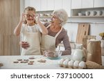 joyful granny and child are... | Shutterstock . vector #737100001