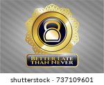 golden emblem or badge with... | Shutterstock .eps vector #737109601
