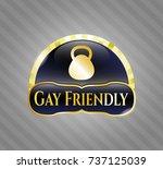 shiny emblem with kettlebell... | Shutterstock .eps vector #737125039