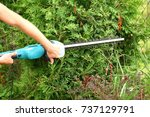 hedge trimmer with electric... | Shutterstock . vector #737129791