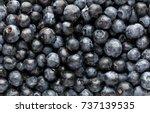 fresh acai berries as background | Shutterstock . vector #737139535