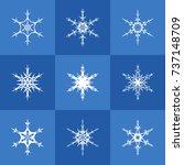 set of nine white snowflakes... | Shutterstock .eps vector #737148709