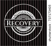recovery silver badge or emblem | Shutterstock .eps vector #737173405