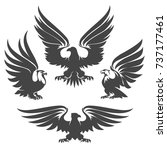 heraldry eagles  hawks and... | Shutterstock . vector #737177461