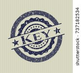 blue key distress rubber stamp | Shutterstock .eps vector #737182534