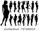 set of black vector silhouettes ...