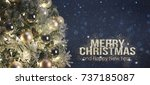 holiday background with... | Shutterstock . vector #737185087