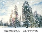 Blurred Background Forest Snow...