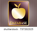 shiny badge with apple icon... | Shutterstock .eps vector #737202325